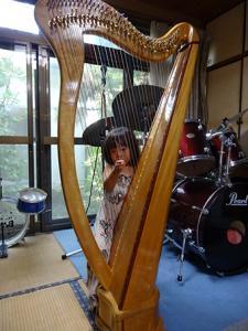 w-chiari-harp1